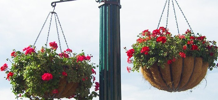 Two coco coir lined hanging baskets on a pole