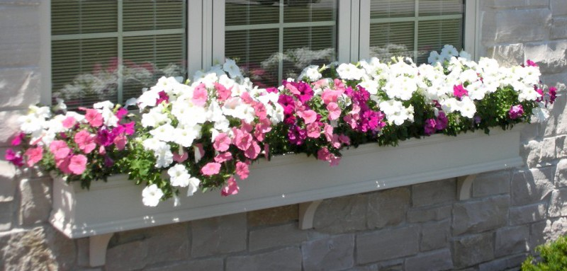 an eight foot long window box under a window