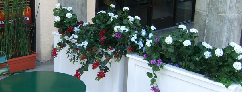 Cafe storefront with planters and flowers