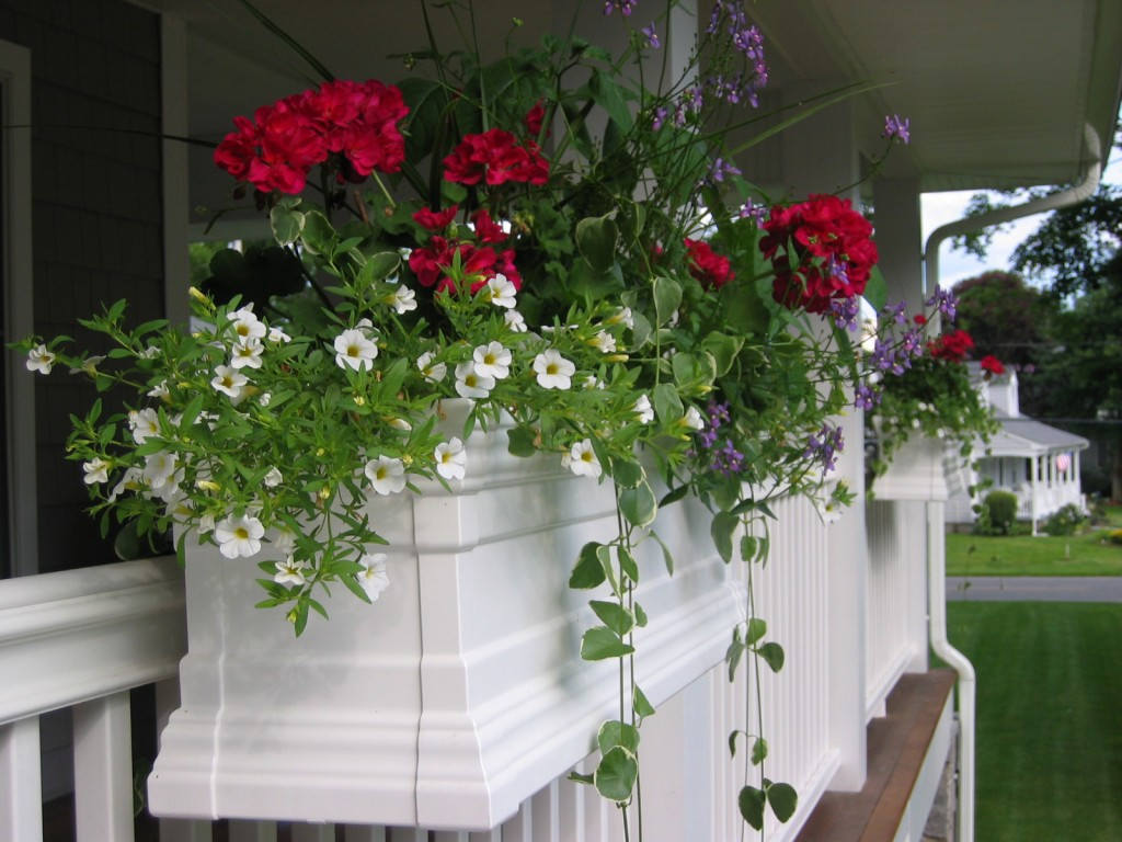 Another spring flower success story thanks to Royal Vinyl Window Boxes.