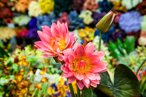 Natural looking silk flowers are an easy way to design better window displays and Realtors love them for home staging.