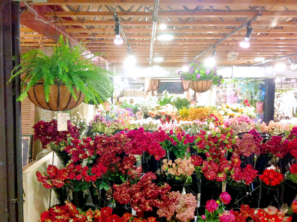 Visit our local floral showroom in Solana Beach!