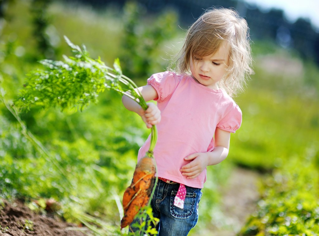 This little gardening tyke is well on her way to a healthy understanding of where food comes from.