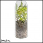 Fun and modern, terrariums fit in windowsills and on desktops for a pop of color.