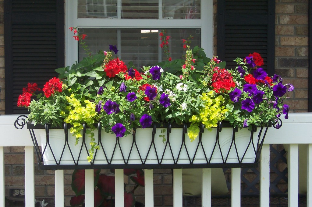 Medallion window box on a porch rail brings beautiful curb appeal to this home.
