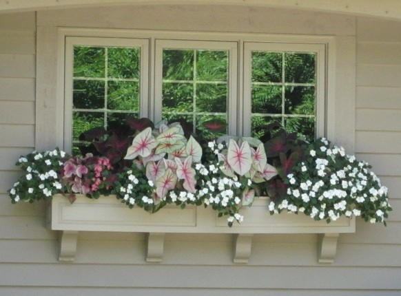 Framed Two Panel Cedar Window Box Painted White