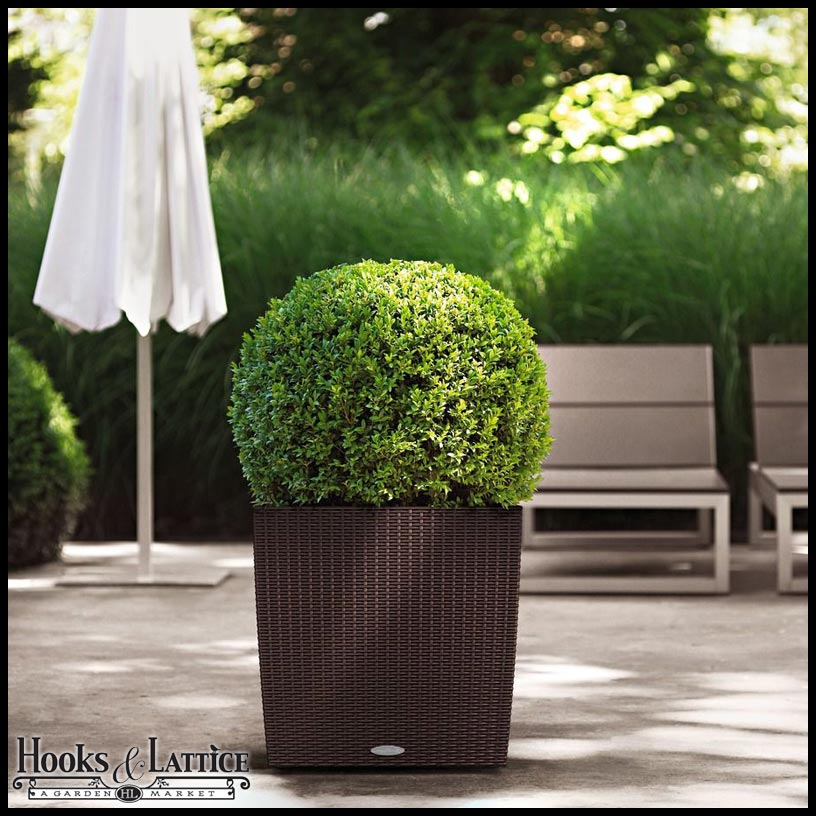 Cottage Weave Cube Self-Watering Outdoor Planter