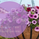 How To Care for Hanging Baskets