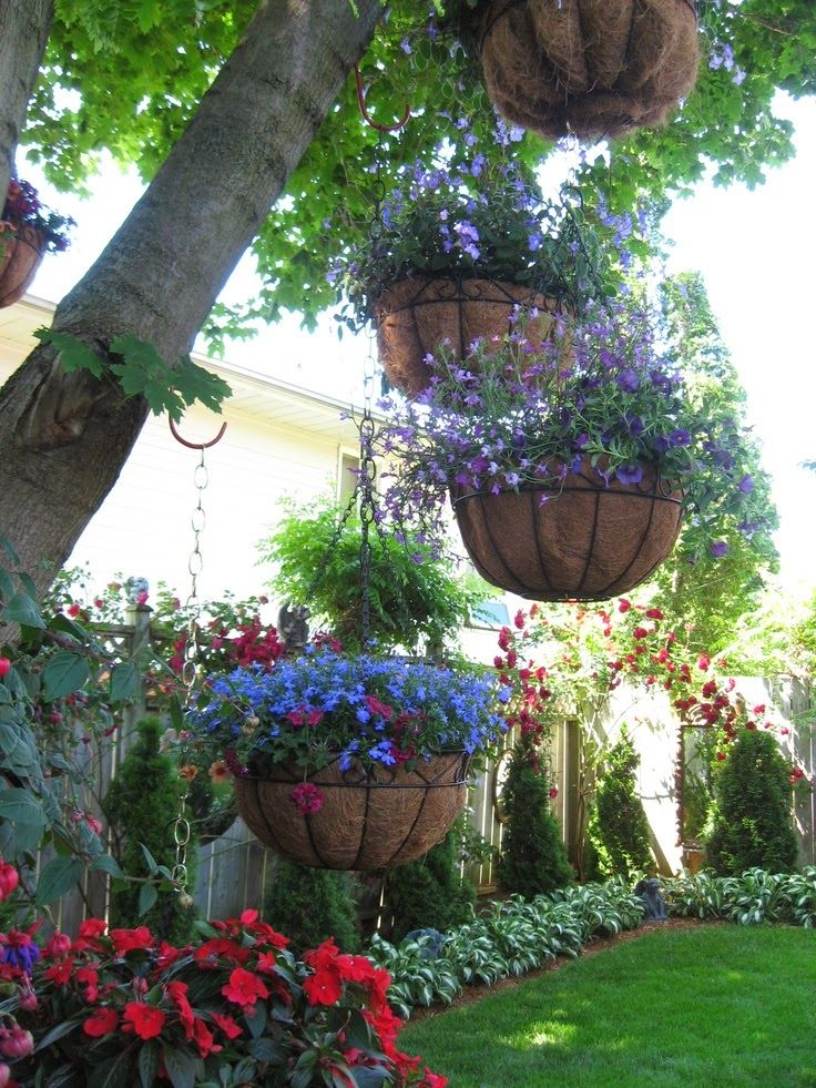 Coco liners in hanging baskets