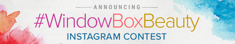 Announcing the Hooks & Lattice #WindowBoxBeauty Instagram Contest