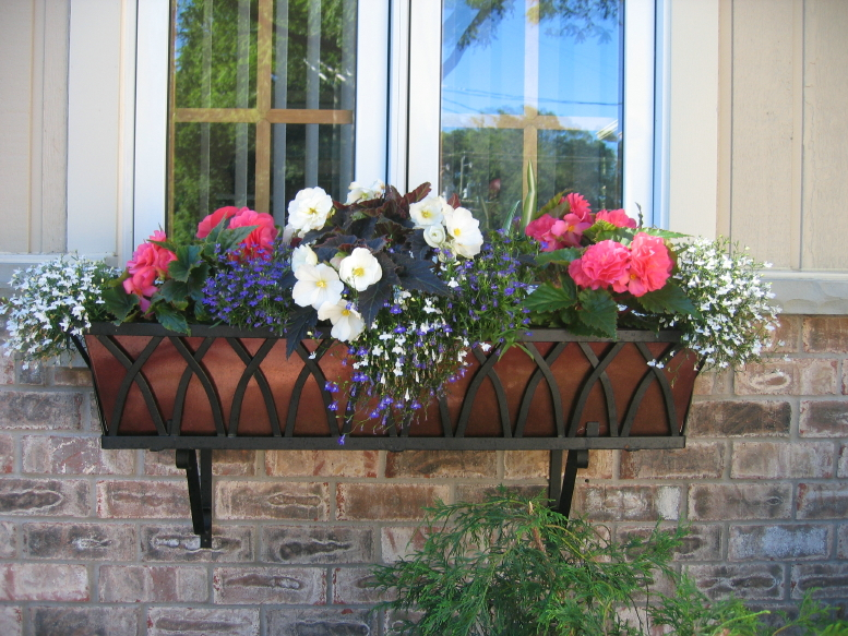 Go European-Chic with Wrought Iron Window Boxes and ...