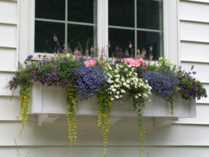 An XL window box
