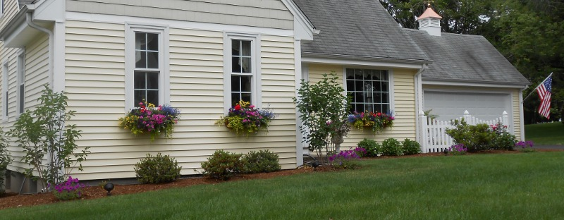 A home with several window boxes