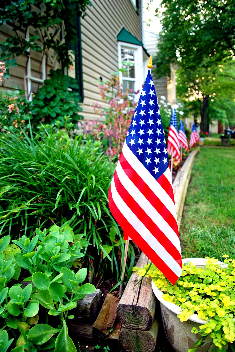 Make your victory garden even more patriotic by lining beds with American flags.