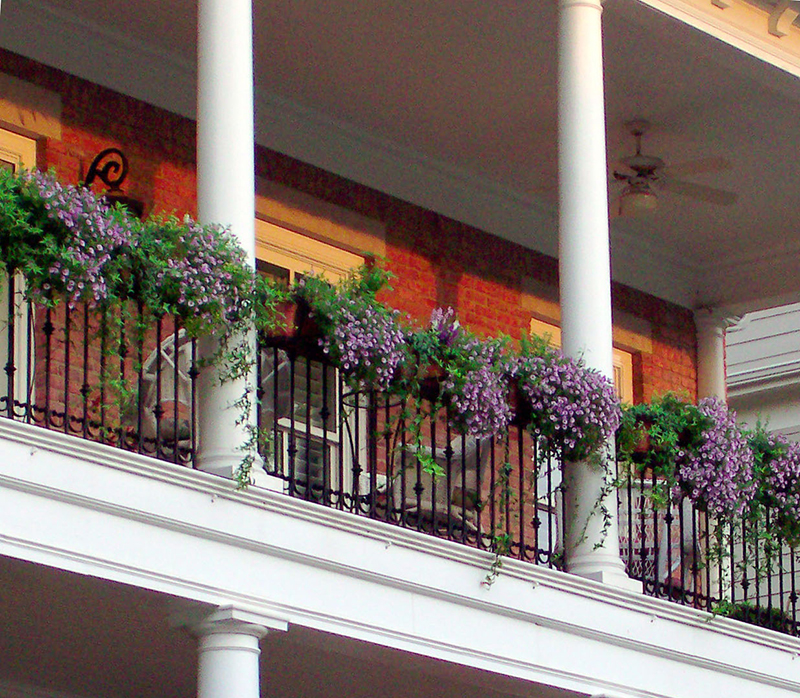 Medallion Decora Railing Boxes with Terra Cotta liners.
