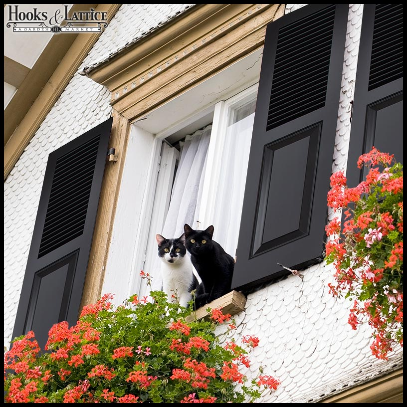 How to Enhance Home Decor Elegance with Exterior Shutters - Hooks ...