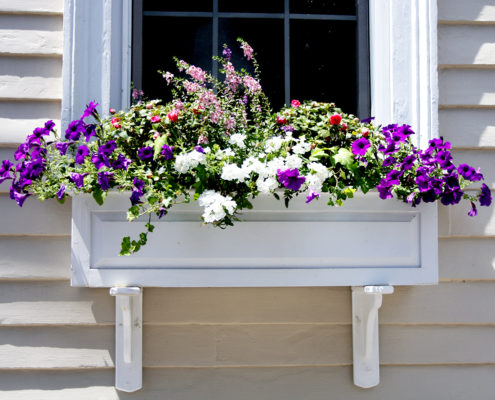 Raised Panel Wood Window Box Painted White