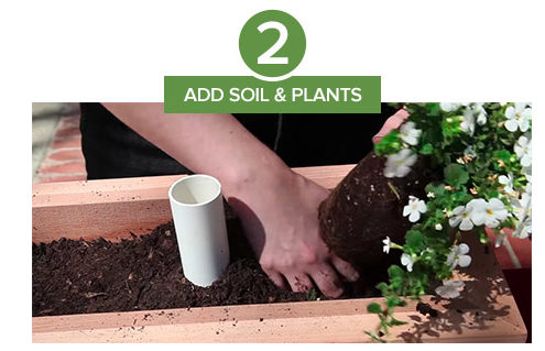 Step 2: After placing the planter reservoir in your container, add soil and plants.
